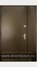 Дверь (порошок и винилискожа)